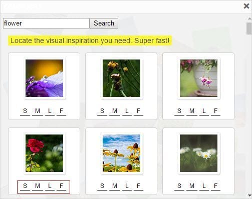 Flower search term
