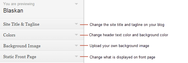 Customizer options