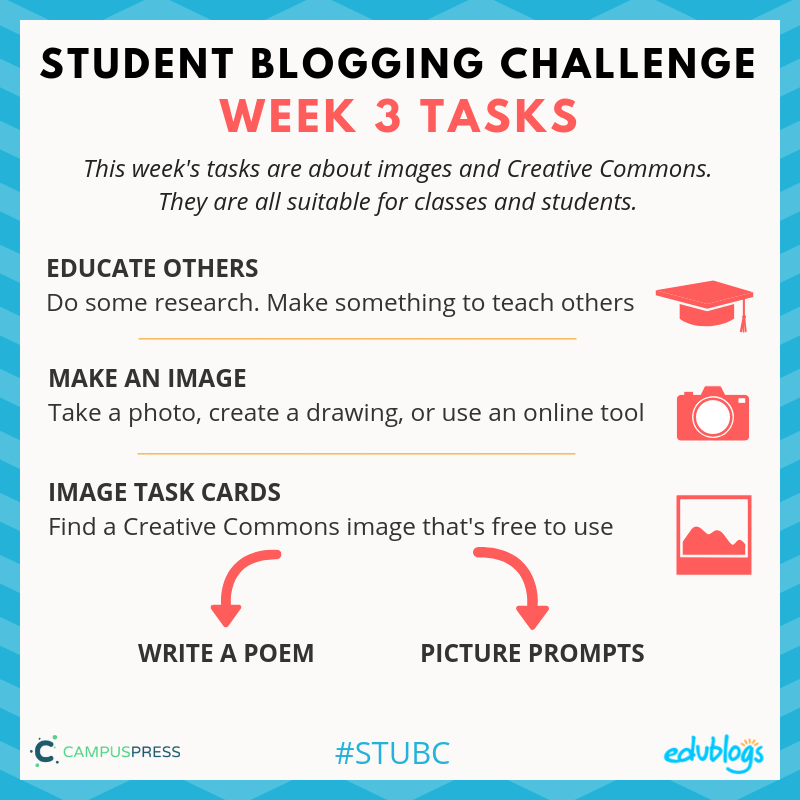 STUBC week 3 tasks summary
